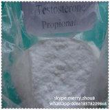 Hohes Zollpassierschein-Kinetik-Testosteron-Propionat 100mg/Ml für Muskel-Wachstum