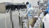De e-vloeibare Peristaltische Pomp van de Machine van het Flessenvullen