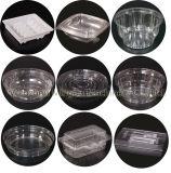 Automatische PlastikThermoforming Maschine für Kappen-Kasten-Medizin-Tellersegment-Platten-Schnellimbiss-Behälter