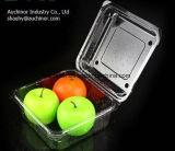 Contenitore della copertura superiore provvisto di cardini animale domestico di plastica libero della bolla di Thermoforming per la torta e la frutta