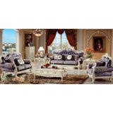 Sofá da sala de visitas para a mobília Home (956A)
