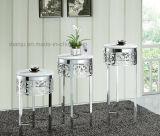Стойка цветка мебели металла специальной конструкции роскошная (DF1008)