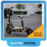 大人/緑の電気スクーターのモーターバイクのためのモーターを備えられたスクータの検討