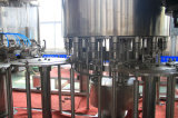Type rotatoire automatique machine de remplissage d'eau potable pour la petite bouteille