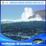 HDPEの海の水産養殖のための深海の浮遊魚のケージ