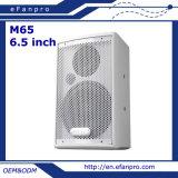 Вся частота определяет коробку диктора встречи 6.5 дюймов профессиональную (M65)