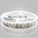 최고 긴 수명 높은 광도 5050 SMD 유연한 LED 지구