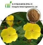 100% naturel, extrait de prose de soja, poudre en poudre, semence Oenothera Biennis