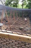 Rete metallica del pollo & del coniglio con l'acciaio a basso tenore di carbonio