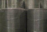 Rete metallica saldata dell'acciaio inossidabile 304 (rete metallica saldata ss)