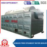 Chaudière à eau chaude emballée allumée par cosse de riz de biomasse