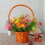 (BC-WF1034) Cestino naturale Handmade ecologico del fiore del salice