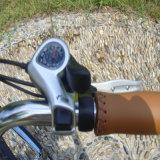 人のための250W36V浜の電気自転車