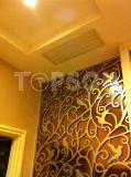 Écran se pliant de diviseur de pièce d'acier inoxydable de fabrication de tôle pour la décoration d'hôtel