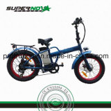 後部モーター8fun脂肪質のタイヤの電気自転車