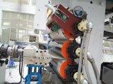 Protuberancia de mármol de imitación de la hoja del PVC que hace la máquina