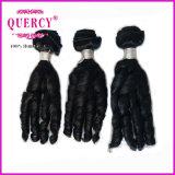 Menschen-Jungfrau Remy Brasilianer-Haar des Fabrik-Preis-billig 100%