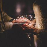 Luz de hadas de la cadena del cobre de la decoración de la boda Cr2032