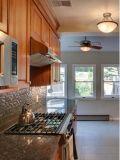 Despensa moderna norte-americana da cozinha do apartamento