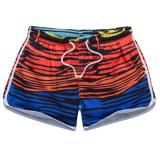 Swimwear del bikini di usura della spiaggia dei 2017 delle donne circuiti di collegamento di nuoto