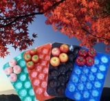 Pp.-Tellersegmente für das Obst und Gemüse, die Wegwerf-pp. Kunststoffgehäuse-Tellersegmente verpacken