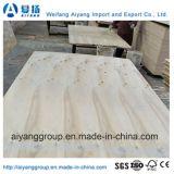 Handelsfurnierholz des Hartholz-Kern-Okume/Bintangor von Shandong