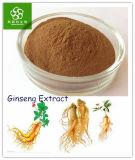 100% natürliches Panax Ginseng-Auszug-Puder ermüdungsfrei