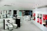 Produtos de produtos sanitários Display Rack para a sala de banho, visor de parede de torneiras