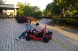 EPA approuve Red 80cc 49cc Mini Go Kart