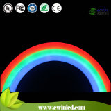 10*24 24V LED Flex Neon Tube Light Multicolor 50m CER RoHS UL