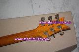Fotorezeptoren reden an,/Mahagonikarosserie u. Stutzen,/Afanti elektrische Gitarre (APR-046)