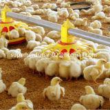Машинное оборудование подавать цыплятины для фермы бройлера
