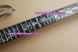 Afanti Musik-elektrische Gitarre (AIB-678)