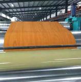 Les graines en bois PPGI de modèle fabriquées en Chine utilisée dans le garage