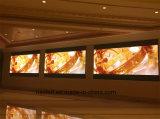 Parete locativa di P4 P5 LED video dell'interno per i concerti della fase