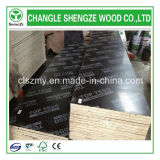 필름 Faced Plywood 또는 Laminated Plywood/Shuttering Plywood/Marine Plywood