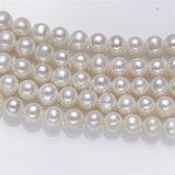 円形の大型の実質の淡水の淡水の真珠の近くの10mm AAは半ストリング真珠の繊維に玉を付ける