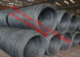 35X35X3熱間圧延の角度Steel/35X35の熱間圧延の鉄の鋼鉄