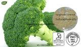 Estratto naturale 0.1%-98% Sulforaphane del broccolo di alta qualità