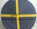 실린더를 위한 청동색으로 만들어진 PTFE 착용 테이프 가이드 지구