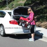 Verdien om Vouwbaar/het Vouwen van het Kamperen van de Wagen te hebben Wagen