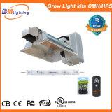 630W/700W Dimmable는 가벼운 장비 CMH/HPS를 증가한다 가벼운 장비 LED를 증가한다 가벼운 장비를 증가한다