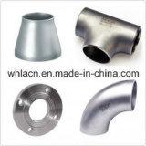 Accoppiamento della pompa del pezzo fuso di investimento dell'acciaio inossidabile (pezzo fuso perso della cera)