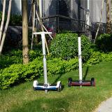 Bunter Selbstausgleich-elektrischer Roller für Erwachsene