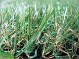 Horizontal avec la pelouse sans eau d'herbe artificielle
