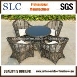 Напольная установленная мебель сада мебели (SC-B8954)