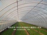 저가 열대 농업 온실