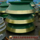 Voering van de Kom van de Mantel van de Vervangstukken van de Maalmachine van de mijnbouw de Concave
