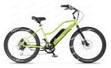 Jobstepp-Durch Kreuzer-elektrischer Fahrrad-Drehkraft-Fühler-Rahmen-integrierte Lithium-Batterie (OC2)