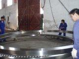 Grandi cuscinetti a sfera 517/2860V di spinta